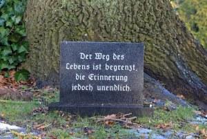 Baumgrab_Stein