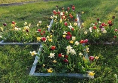 Friedhof_Gustow_Blumenkreuz
